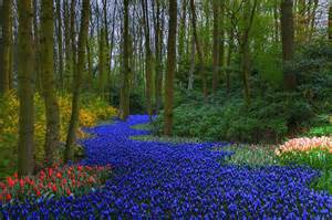 15 des plus beaux jardins du monde jardinsgerbesdangelica