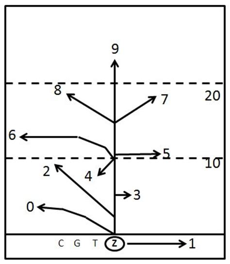 passing tree diagram for football passing tree pdf beatiful tree