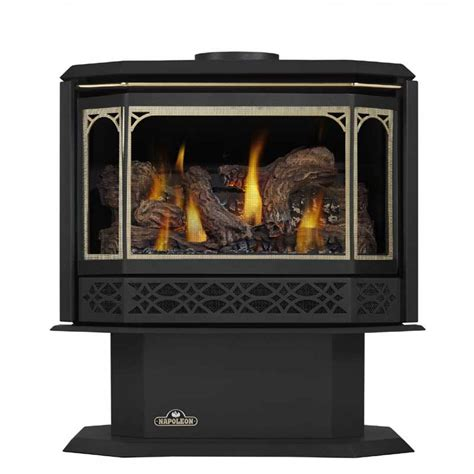 direct vent gas stove fireplace napoleon gds50 1nsb direct vent natural gas stove at