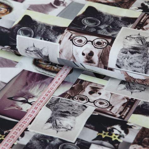 Digitaldruck Jerseystoffe by Jersey Stoff Hunde Katzen Digitaldruck G 252 Nstig Kaufen