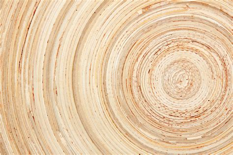 Wooden Wall Murals abstract background as wood natural wood slice 149641694
