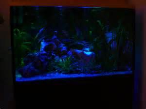 uv le pflanzen aquarium komplett 160 liter abdeckung unterschrank