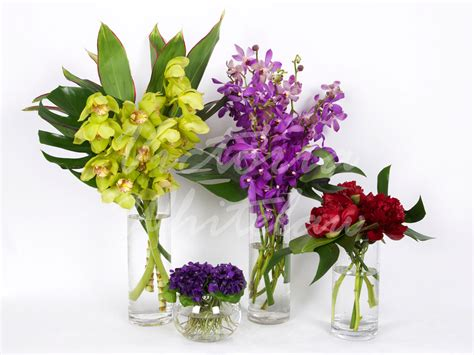 fresh cut flowers fresh flowers driverlayer search engine