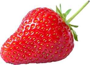 lylou collection p 234 ches r 244 ties et compot 233 e de fraises