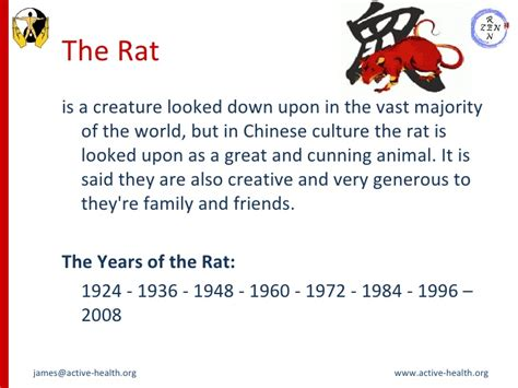 new year meaning of rat new year animal rat meaning 28 images new year animals