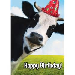 milk it cow birthday card birthday cards cow cards at