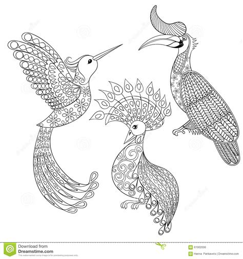 coloring pages for adults hummingbird hummingbirds with flowers coloring pages for adults