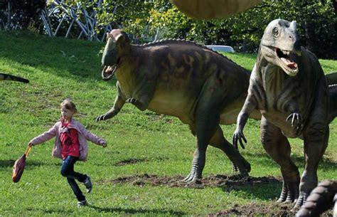 giochi di dinosauri volanti la foto pi 249 con i dinosauri