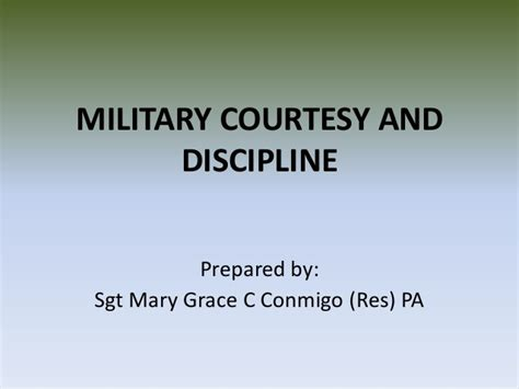 Standards And Discipline In The Army Essay by Army Discipline Essay Writefiction581 Web Fc2