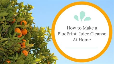 How To Make Your Own Detox Juices by How To Make Your Own Blueprint Juice Cleanse