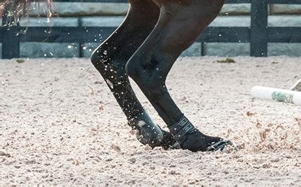 All Weather Surfaces For Horses footing products