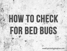 how to inspect for bed bugs 1000 images about bed bugs on pinterest bed bugs