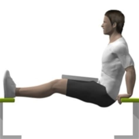 bench dips with weight bench dip weighted weight plate exercise strength