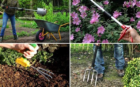 the most useful garden tools for the tomato garden really useful tools for gardeners with a disability