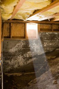 mold remediation services atlanta marietta