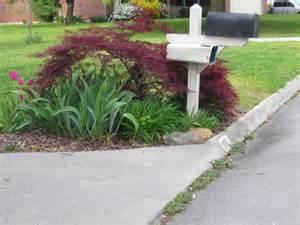 Mailbox Garden Ideas Idea Here Ideas For Landscaping Around Mailbox
