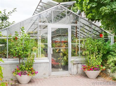 Greenhouse Backyard by How Do I Choose The Best Backyard Greenhouse With Picture