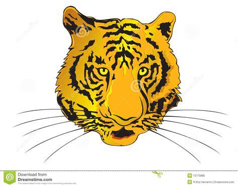 tiger zodiac year stock photo image 12775880