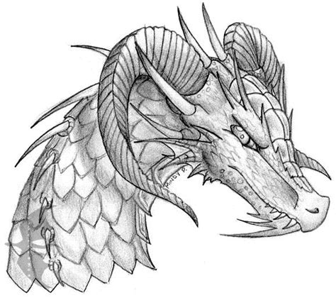 learn how to draw a dragon tattoo tattoos step by step 016 dragon head sketch by oakendragon on deviantart