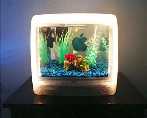 unusual aquarium designs   amazing