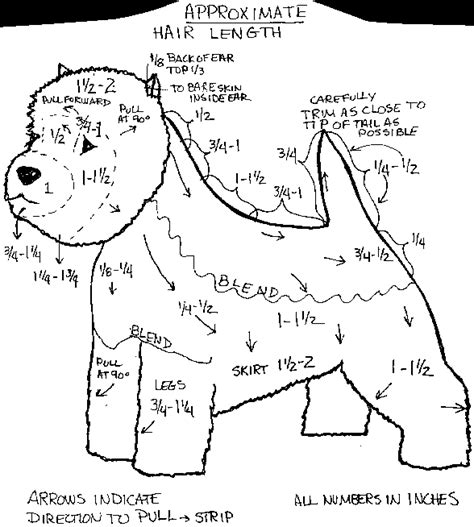 diagram for cutting a westie stately warren manor october 2011