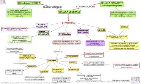 scuola di specializzazione scienze dell alimentazione 13 cellula vegetale organuli mwety 2 0