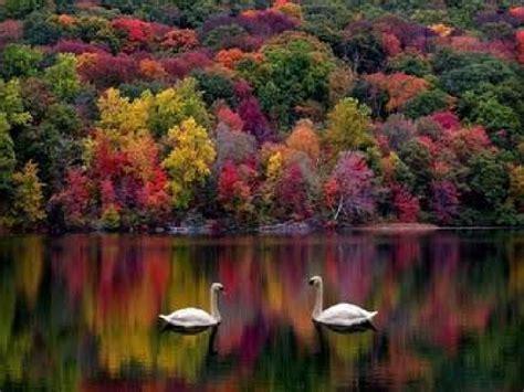 beautiful nature god gifted beautiful nature
