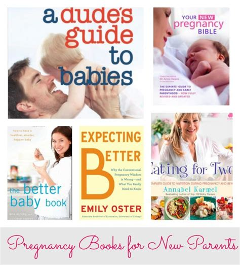 your new pregnancy bible the experts guide to pregnancy and early parenthood books the new pregnancy bible the experts guide to pregnancy