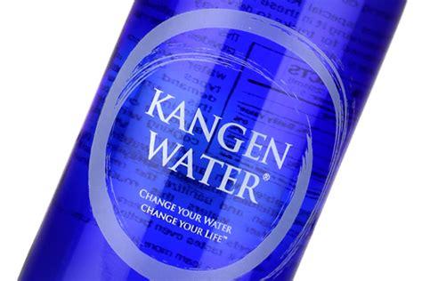 Kangen Water Botol 330ml consumer s guide to buying an ionizer