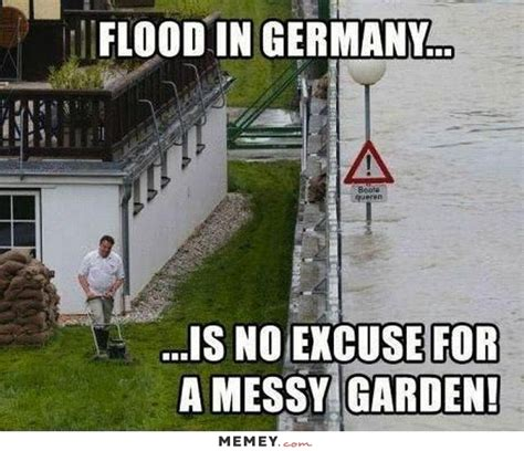 Flood Meme - grass memes funny grass pictures memey com