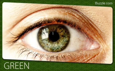 green eye color fascinating facts about eye colors