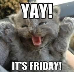 Friday Meme Funny - tgif day s of the week friday pinterest tgif