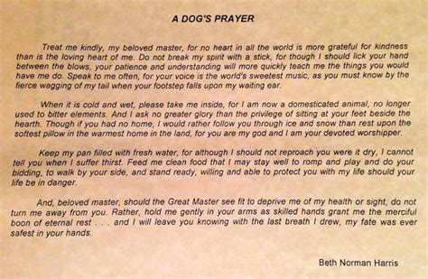 dogs prayer a s prayer stuff to think about dogs