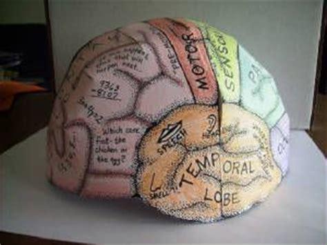 color pattern brain 23 best images about nervous system on pinterest