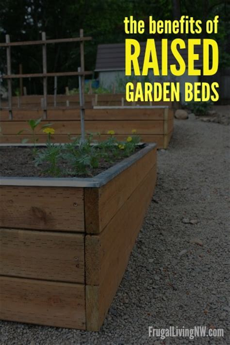 benefits of raised bed gardening benefits of raised garden beds gardening