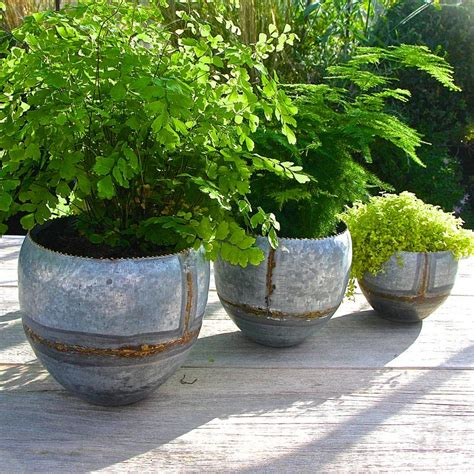Galvanised Planters For Garden by Set Of Three Galvanised Steel Planters By Garden