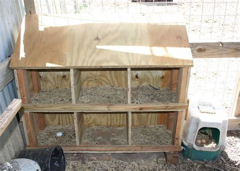 Backyard Chickens Nest Box Size 339 Best Chickens Images On Backyard Chickens