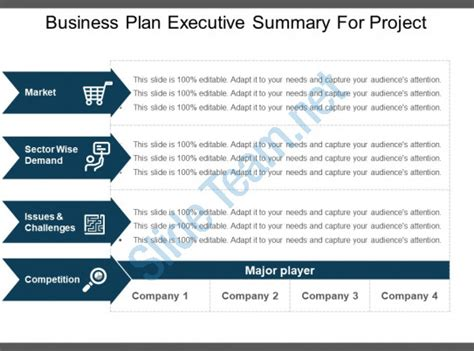 Business Plan Executive Summary For Project Exle Of Ppt Powerpoint Templates Backgrounds Project Executive Summary Template