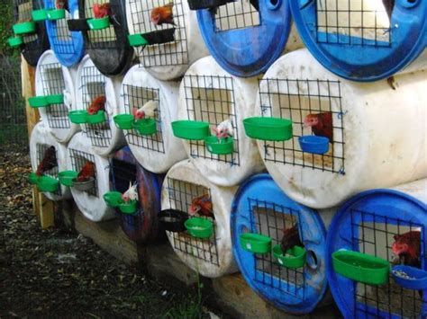 dry  plastic barrel google search chicken cages
