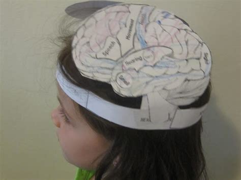 jewish homeschool in nyc sunday science brain hat
