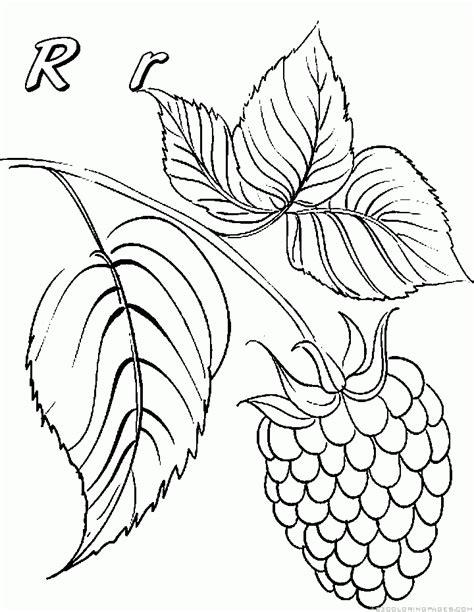 three raspberries coloring page free printable coloring raspberry coloring pages part 2