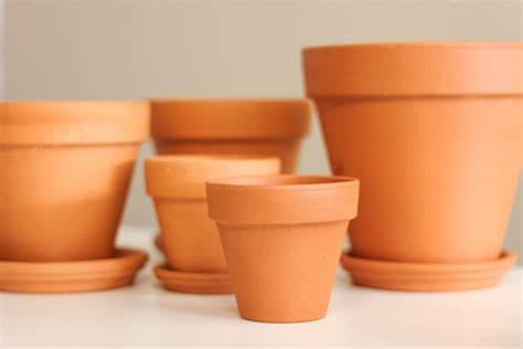 brightnest 4 easy ways to dress up a terra cotta pot