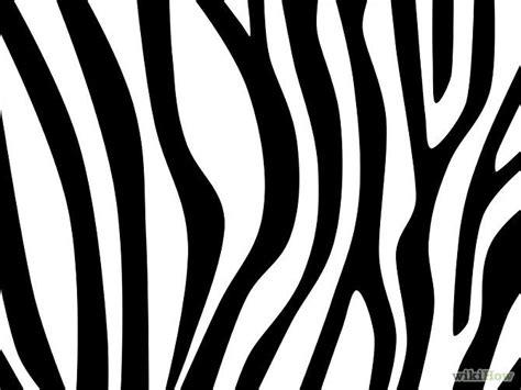 zebra pattern how to draw draw zebra stripes