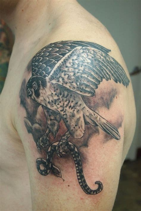 peregrine falcon tattoo 1000 images about ideas on falcon