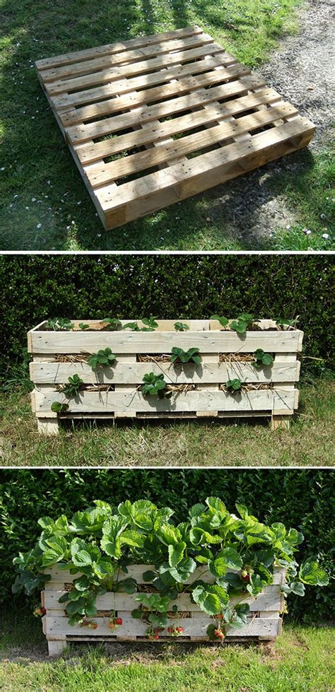 Creative Strawberry Planters by 12 Creative Diy Pallet Planter Ideas For Craft