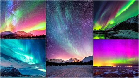 igloo to watch northern lights northern lights
