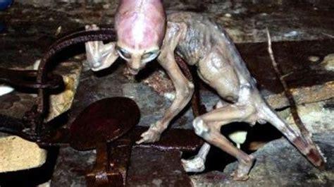 5 11 Beast Millitary Grey top 20 proof of aliens pictures taken proof of