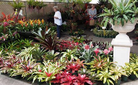 Garden Rocks Brisbane Garden Design Brisbane Garden Ideas Brisbane Design By Anthony Spies Landscape Pty Ltd Rocks