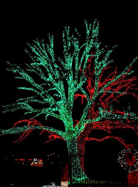 christmas lights in edmond by waterbendingqueer on deviantart