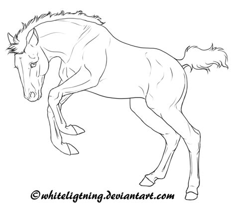 herd of horses coloring pages free horse lineart jumping foal by whiteligtning on